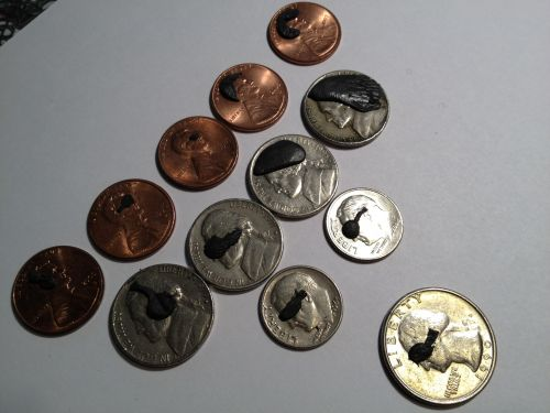 b_500_500_16777215_00_resources_projects_taw1Sugru_09-coin.jpg